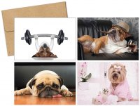 Doggy Thoughts (Multi - Pack) Thank You Note Card
