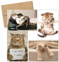 Kitty Thoughts Thank You Note Card