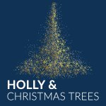 Holly and Christmas Trees