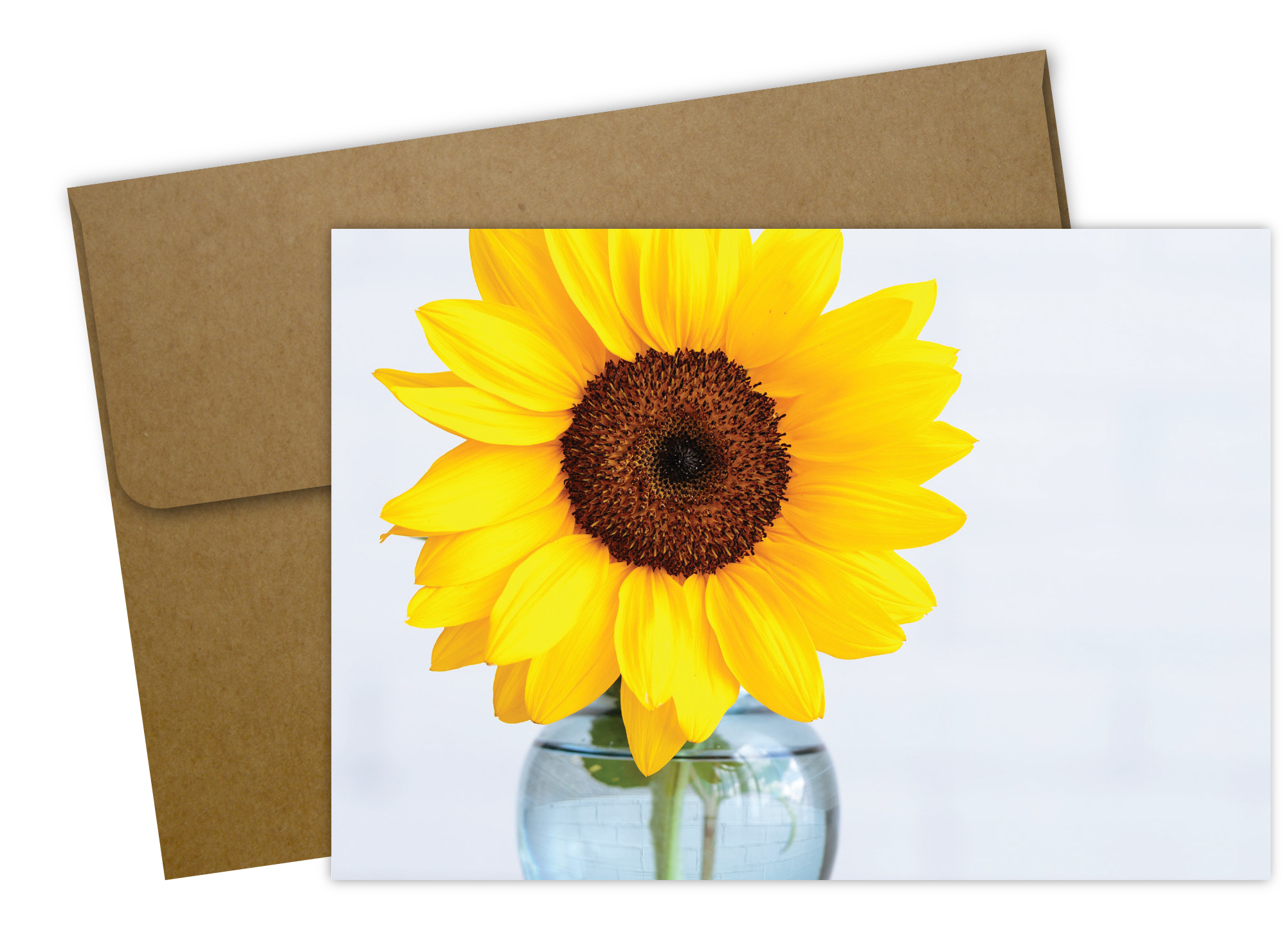 Brighter Days Note Card - 50 Count
