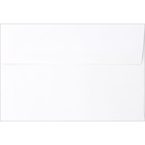 6x9 White Envelope